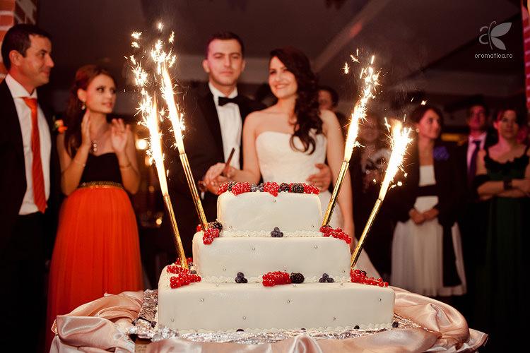 Fotografie nunta - Elena si Tiberiu (57)
