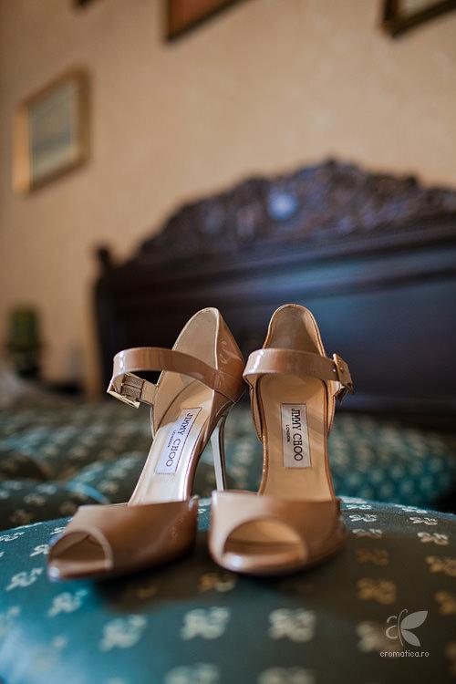 Fotografie nunta - Alina si Catalin (17)