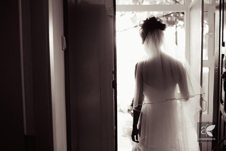 Fotografii nunta Andreea si Dan (28)