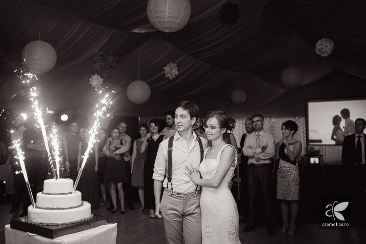 Fotografii nunta Bucuresti Ioana si Ali (43)
