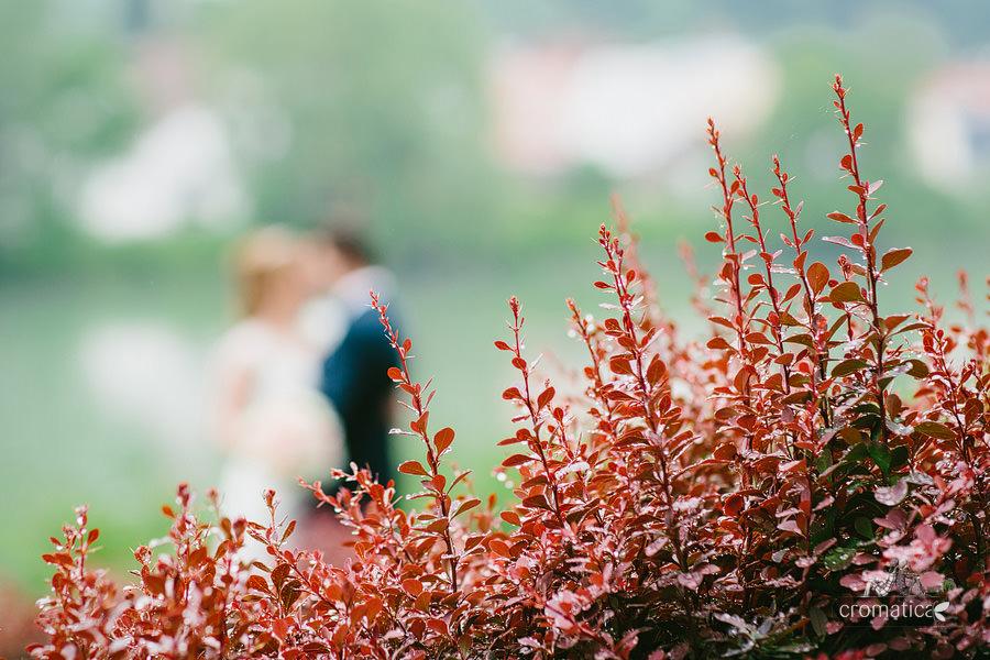 Fotografii nunta Passau, Germania - Maria + Daniel (39)