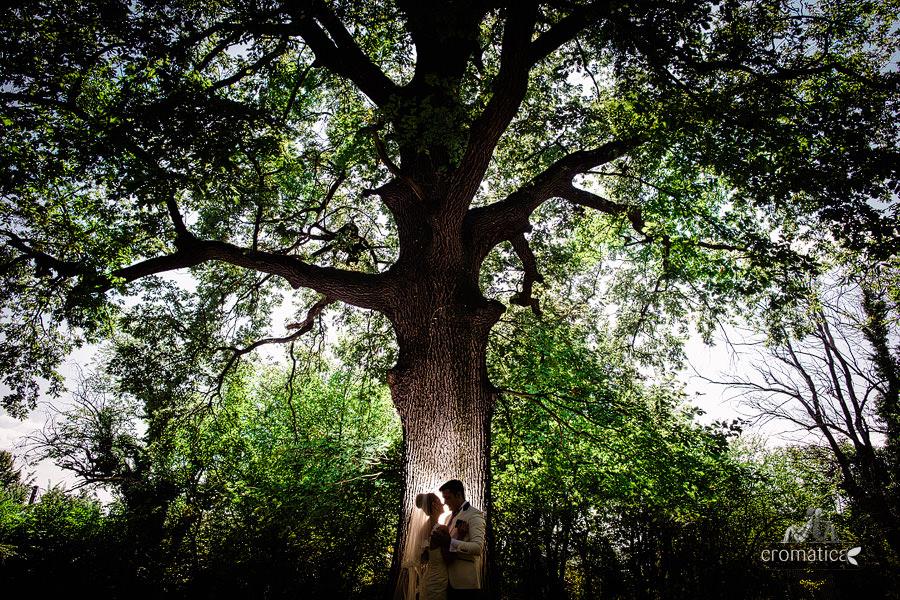 Andreea & Razvan - fotografii nunta Pitesti (17)