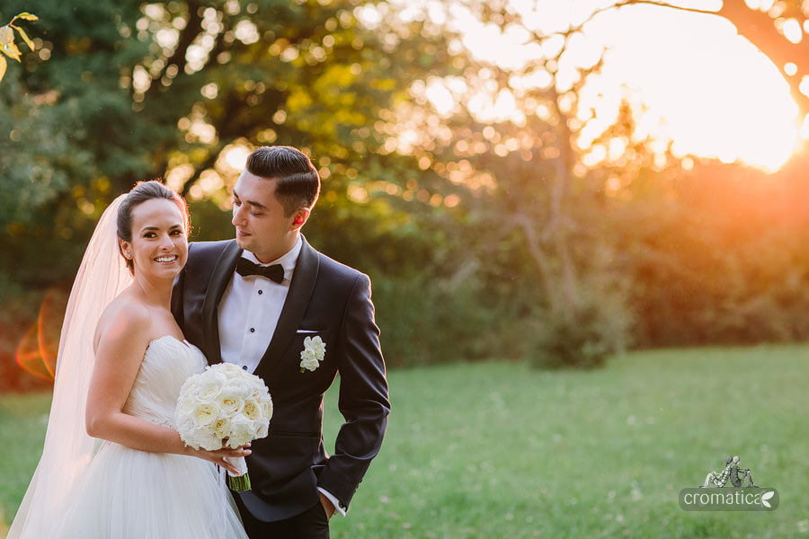 Alexandra & Andrei - fotografii nunta Palatul Stirbey (26)