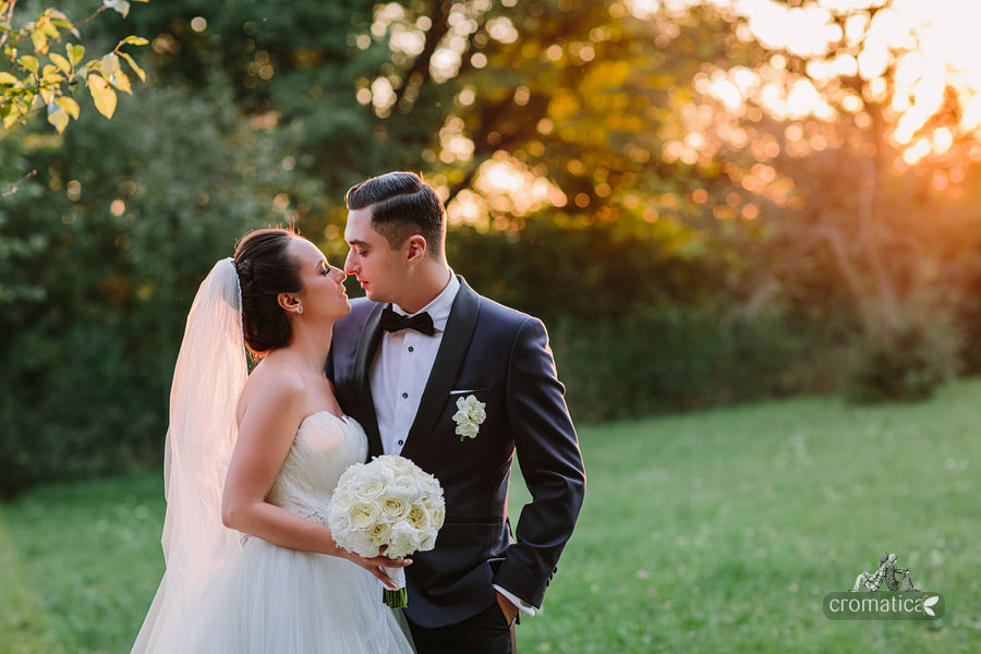 Alexandra & Andrei - fotografii nunta Palatul Stirbey (27)