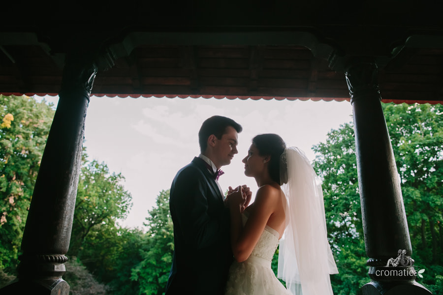 Carmina + Cosmin - Fotografii nunta (22)