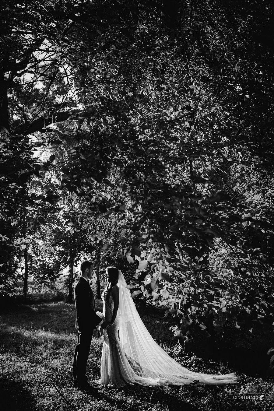 Andra + Vali - Fotografii nunta Palatul Stirbey (15)