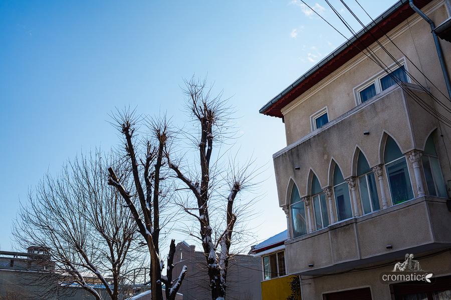 Strada Lizeanu - Ferestre (3)
