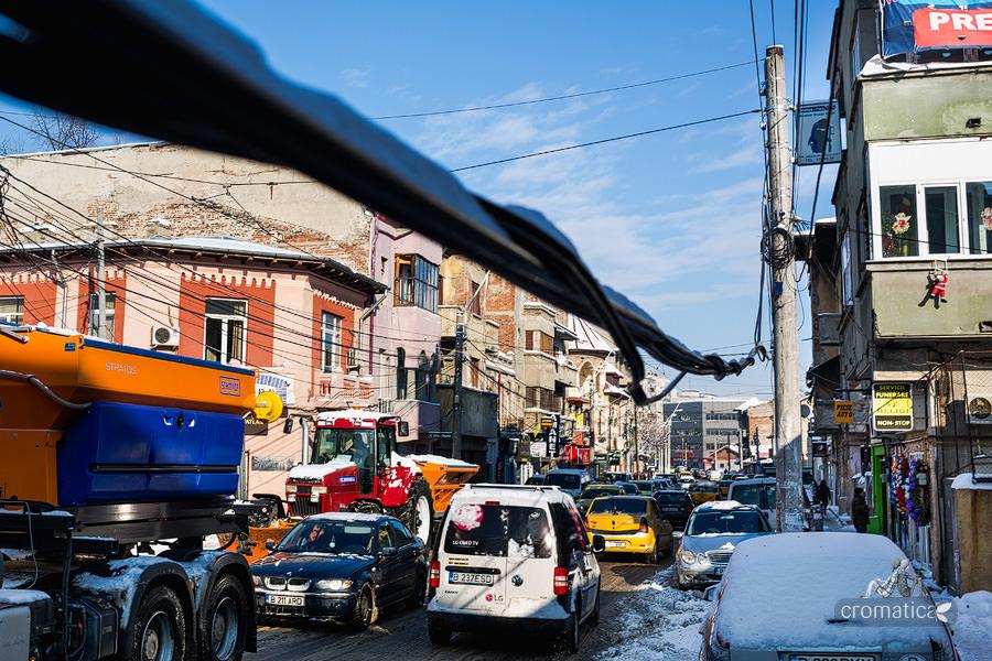Strada Lizeanu - Lianele negre ale unei jungle autohtone (3)