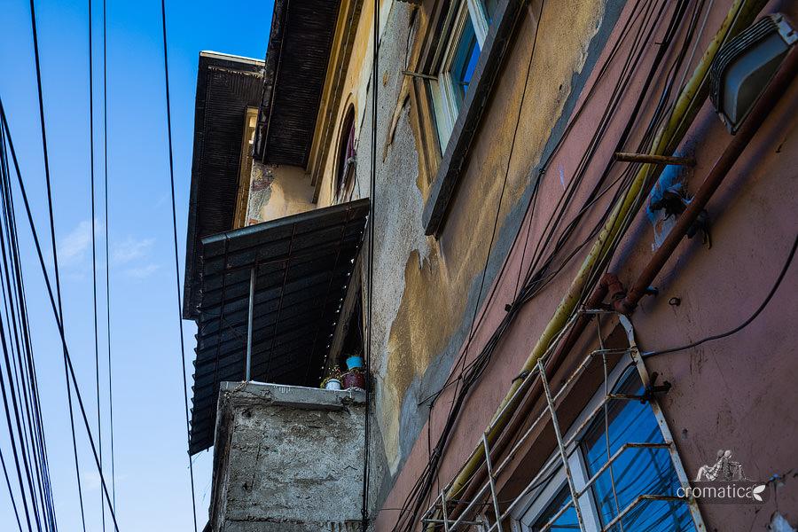 Strada Lizeanu - Lianele negre ale unei jungle autohtone (8)