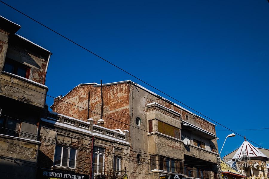 Strada Lizeanu - Lianele negre ale unei jungle autohtone (11)