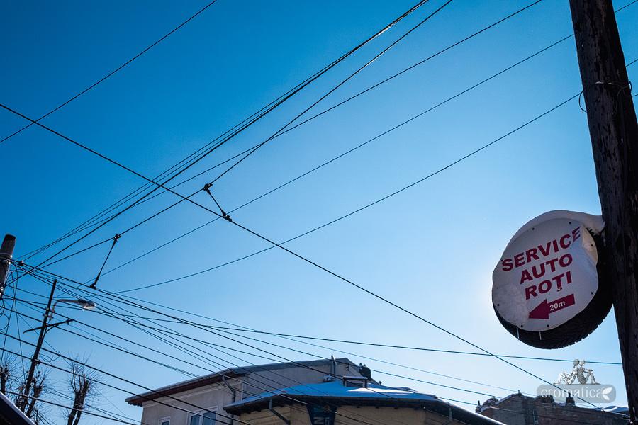 Strada Lizeanu - Lianele negre ale unei jungle autohtone (17)