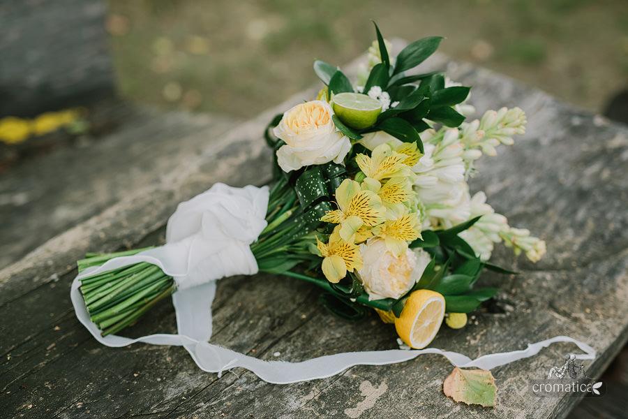Andra & Michael - fotografii nuntă Conacul lui Maldăr (19)