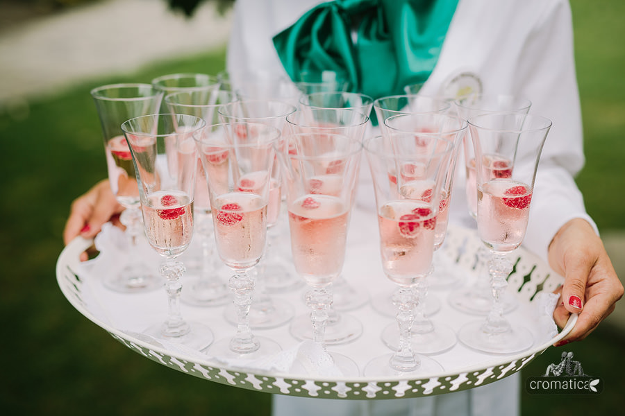 Andra & Michael - fotografii nuntă Conacul lui Maldăr (26)