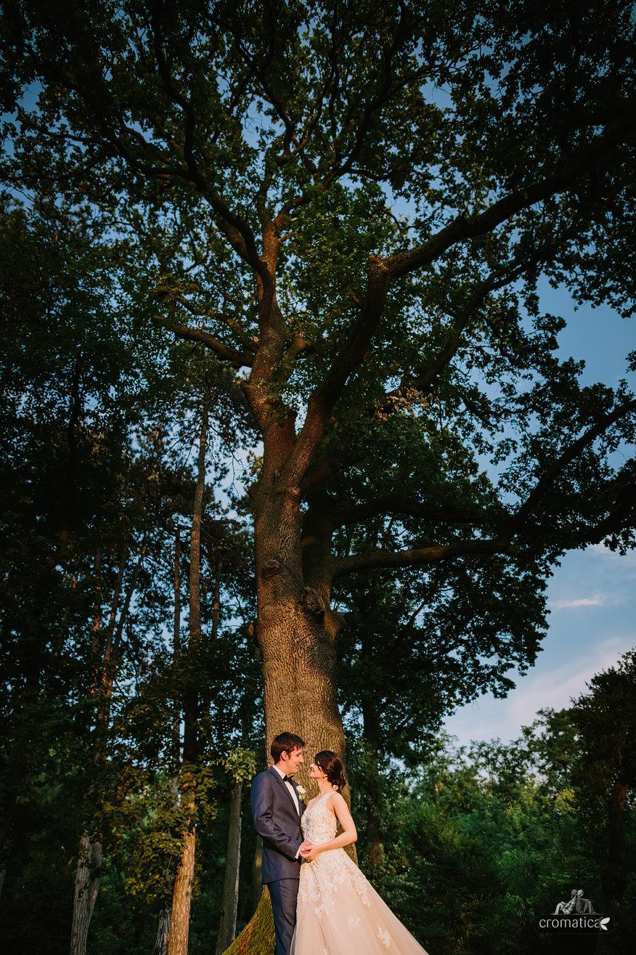 Mihaela & Chris - fotografii nunta Palatul Mogosoaia (29)