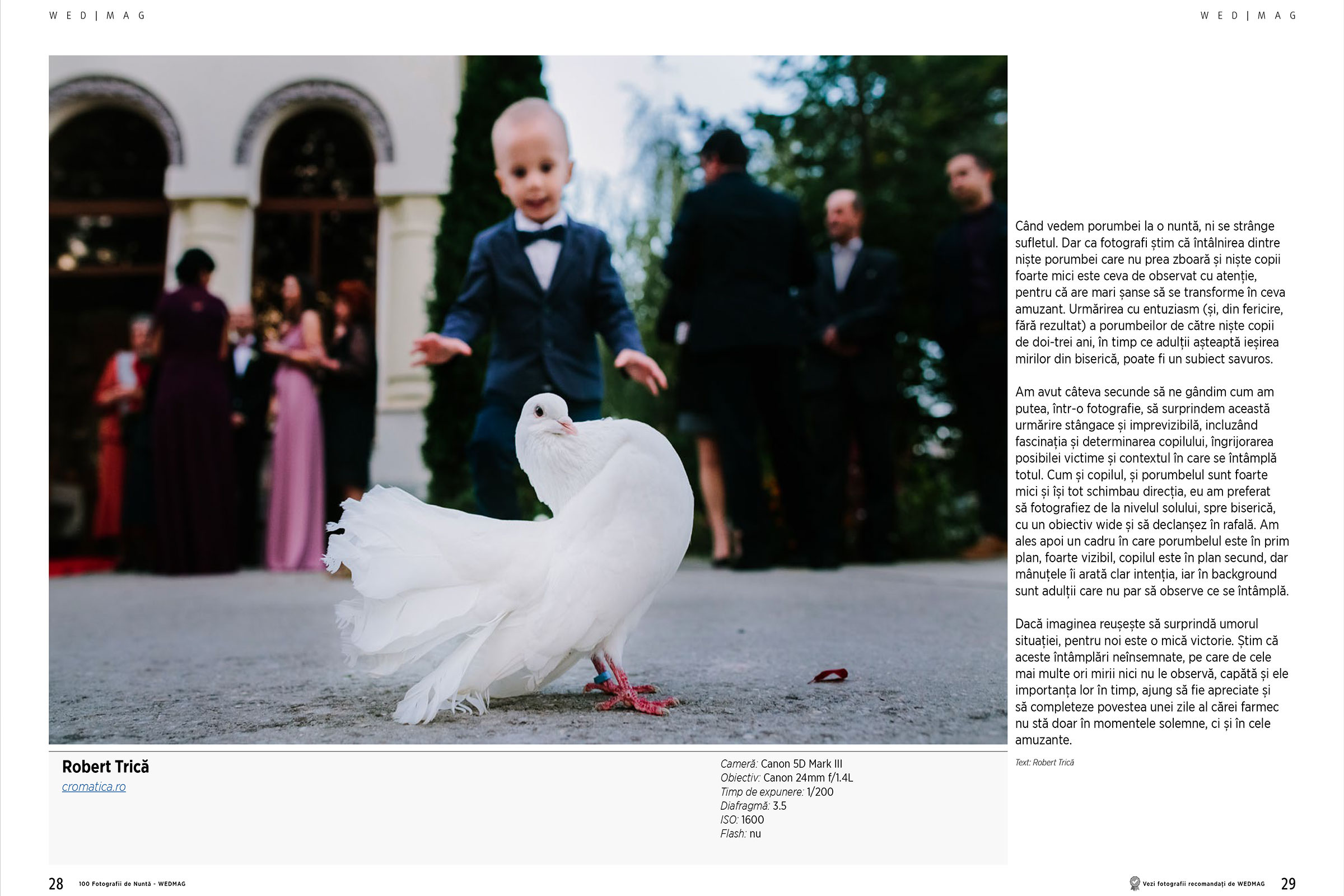 cromatica 100 de fotografii de nunta 2018 02