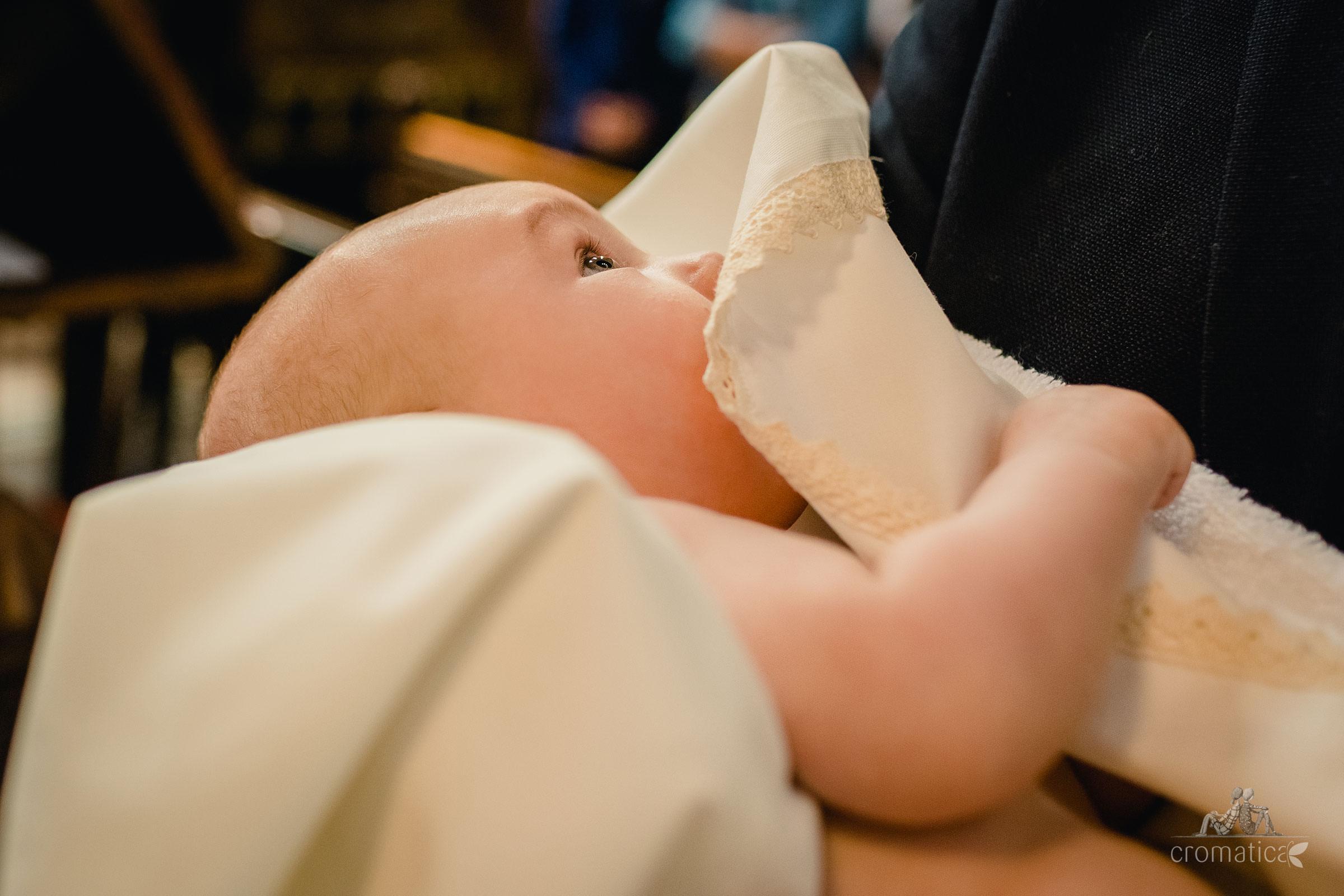 luca botez domeniul manasia 08