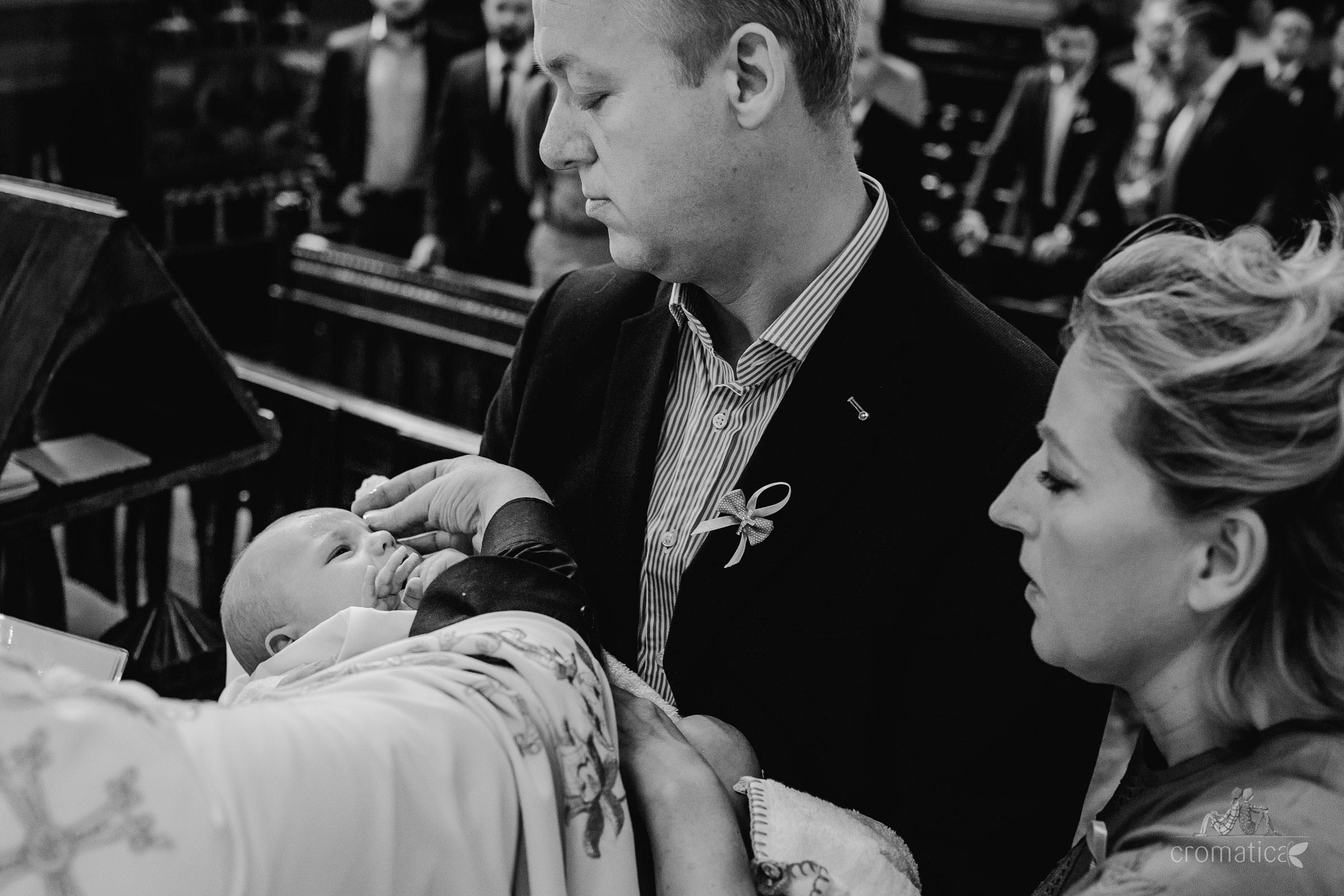 luca botez domeniul manasia 14