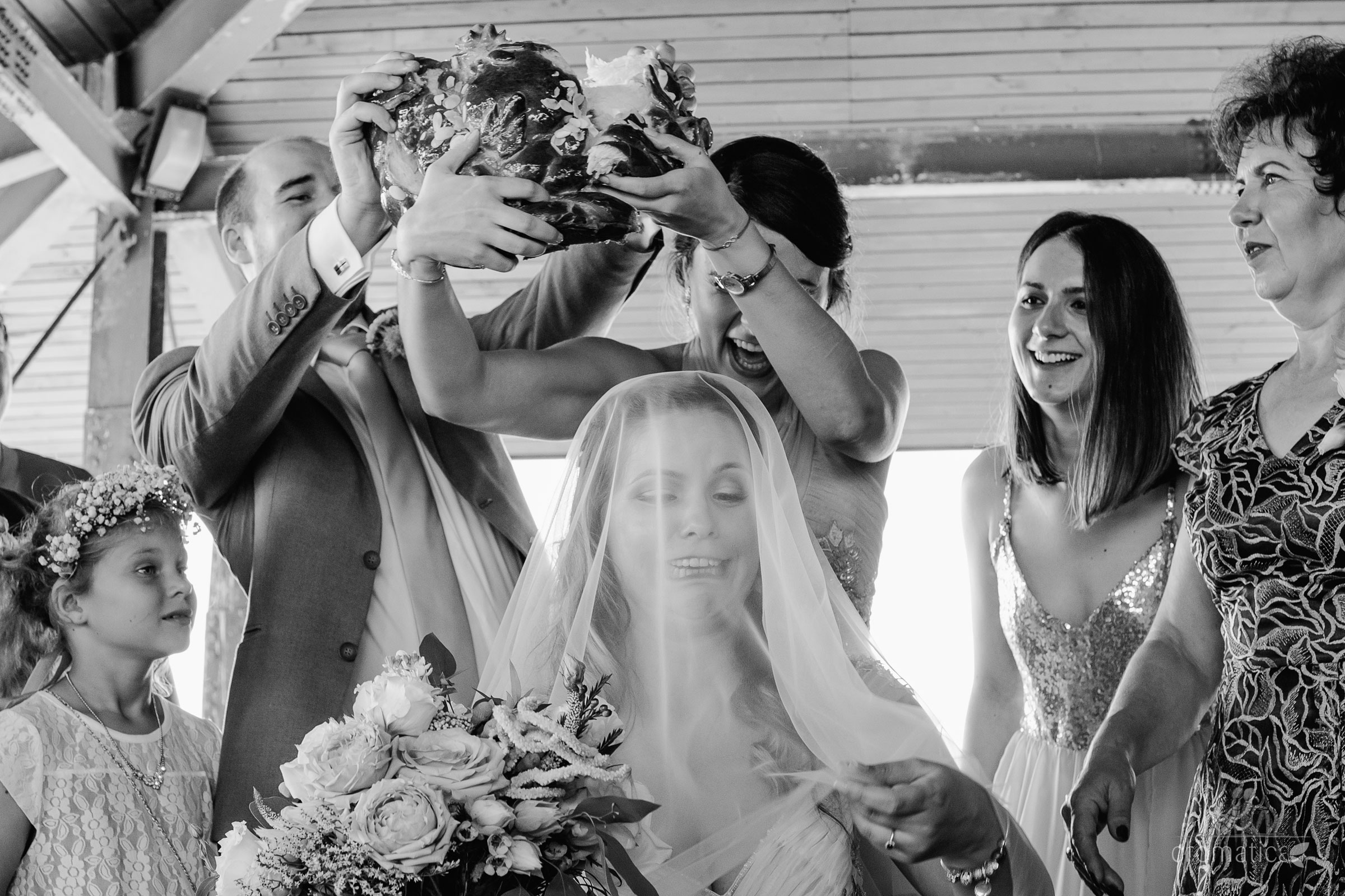 alexandra george fotografii nunta casa vlasia 046