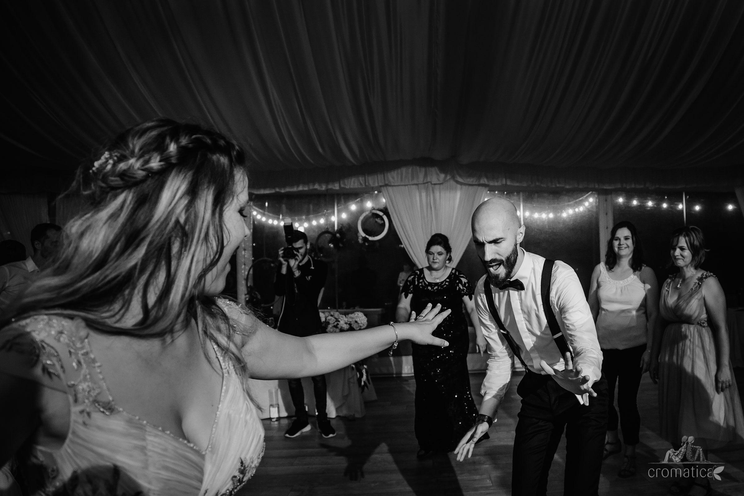 alexandra george fotografii nunta casa vlasia 113