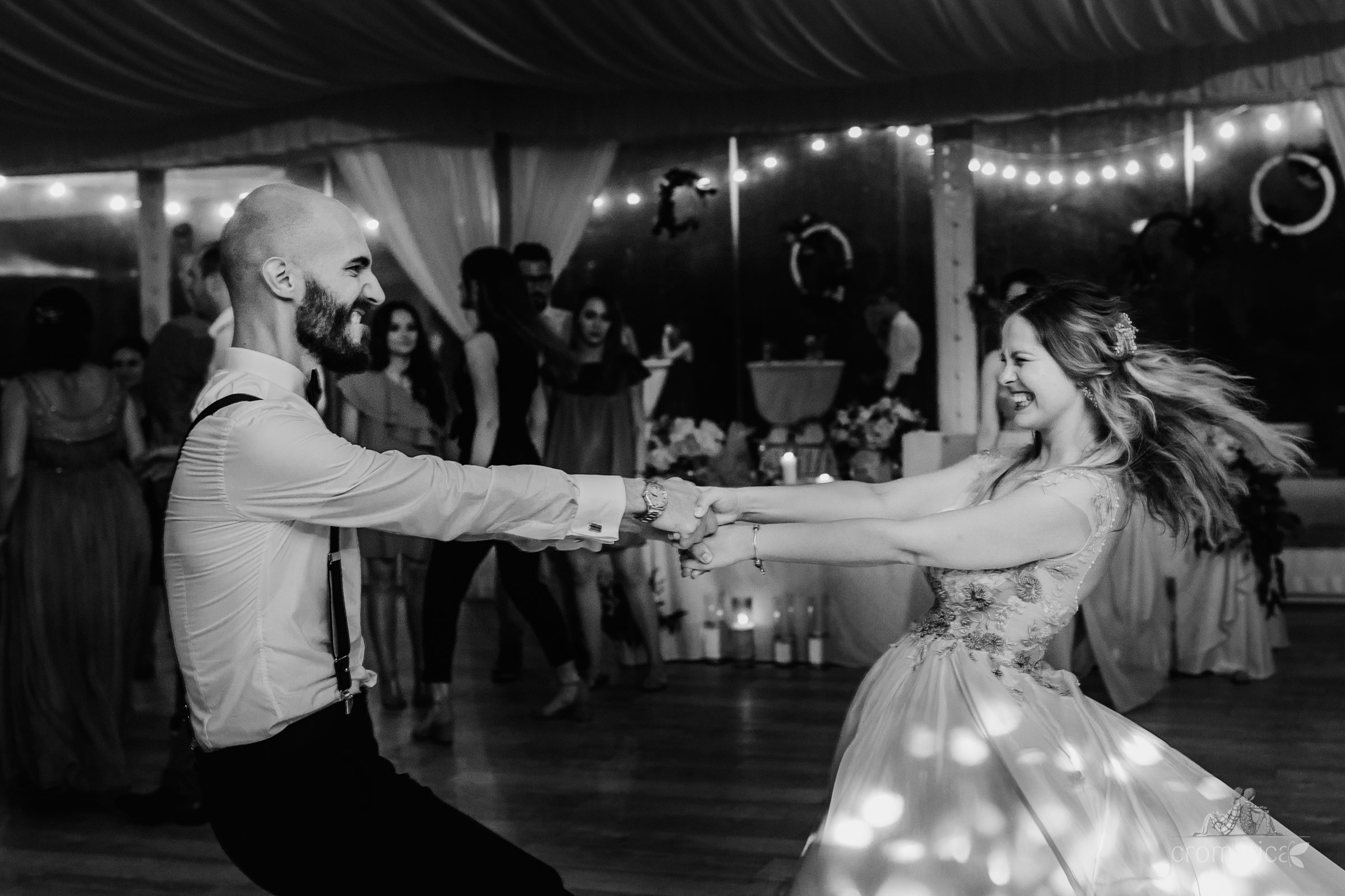 alexandra george fotografii nunta casa vlasia 129