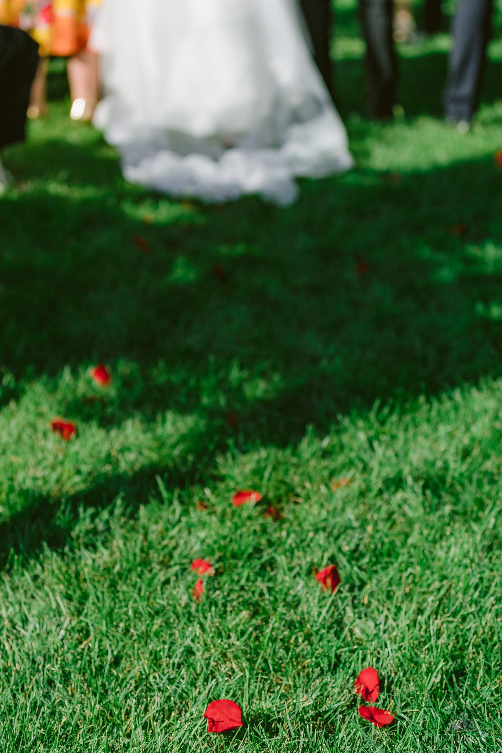 ana mihai fotografii nunta gradina lahovari 028