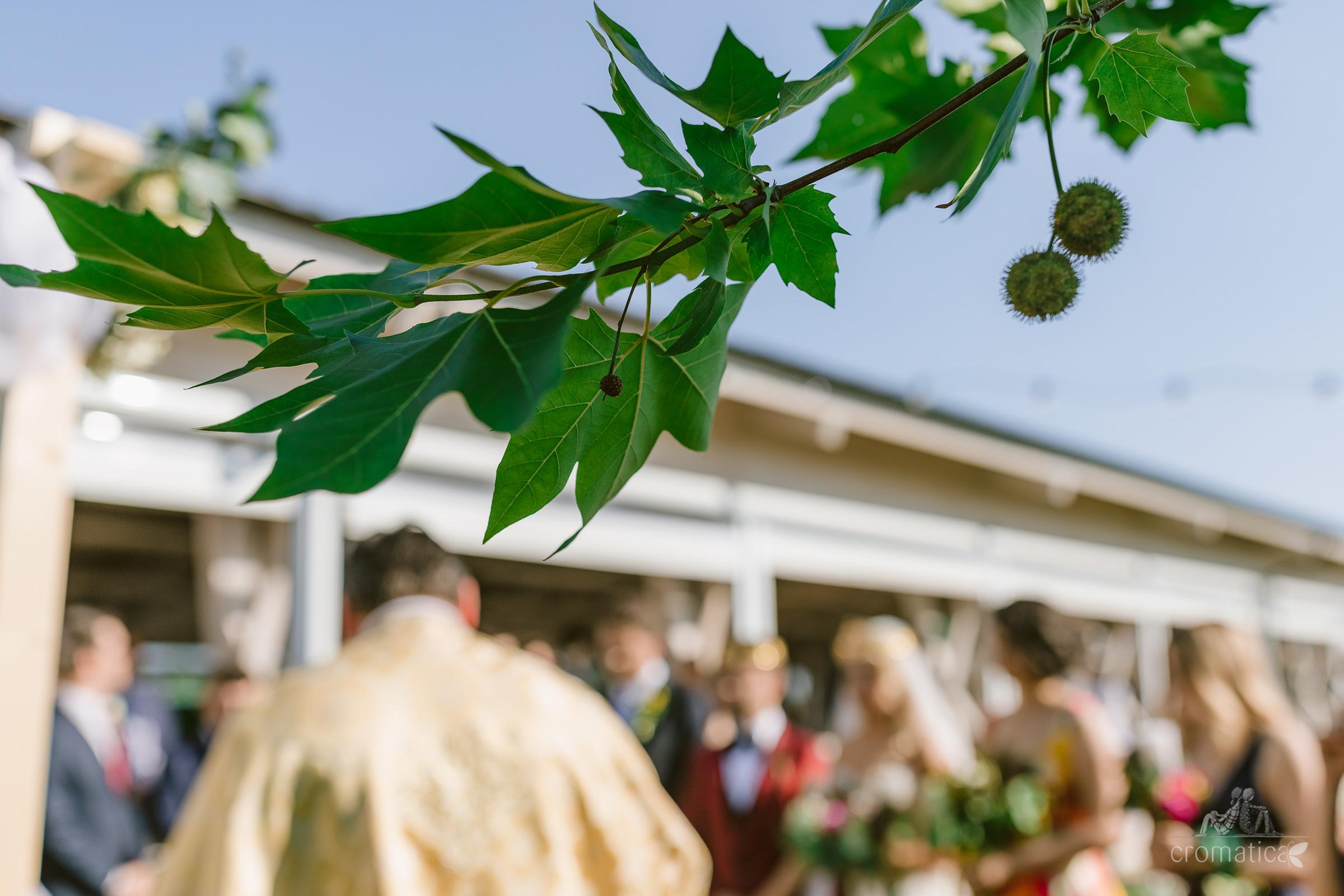 ana mihai fotografii nunta gradina lahovari 032