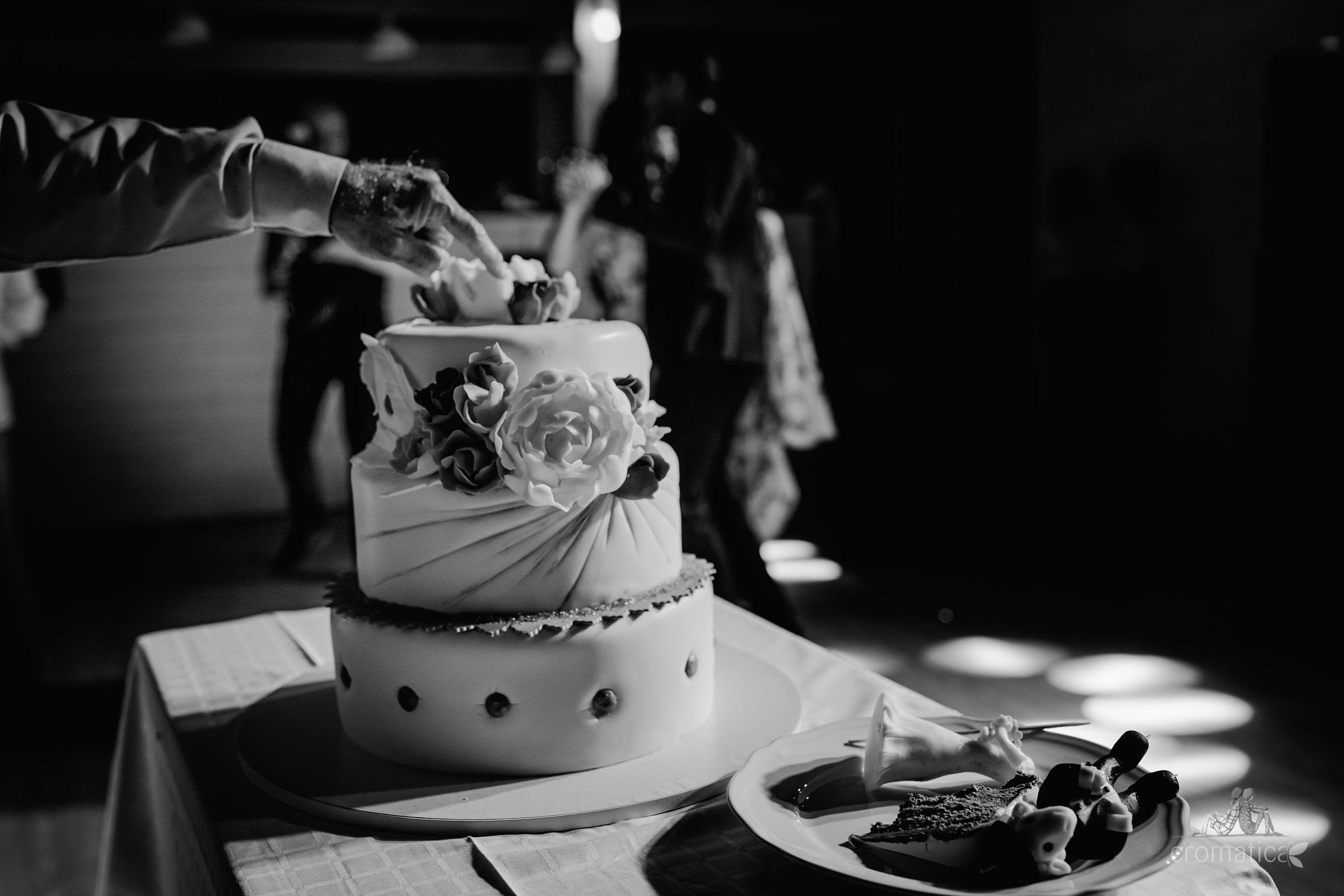 ana mihai fotografii nunta gradina lahovari 139